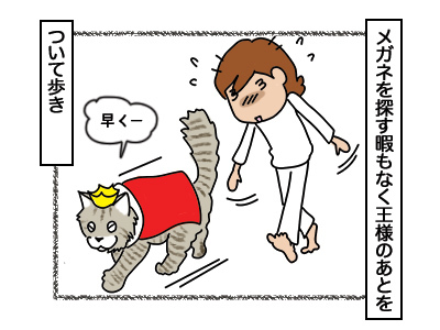 26022018_cat2mini.jpg