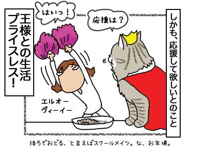 26022018_cat4mini.jpg