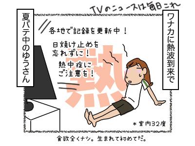 29012018_cat1mini.jpg