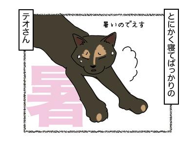 29012018_cat2mini.jpg