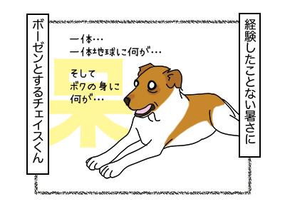 29012018_cat3mini.jpg