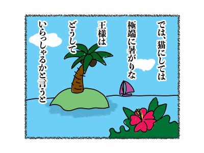 29012018_cat4A.jpg