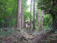 多藤神社_3