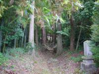 多藤神社_2