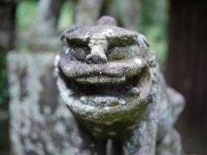 多藤神社_12