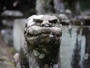 多藤神社_11