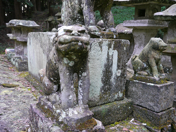 多藤神社_10