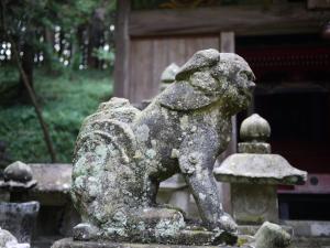 多藤神社_14-1