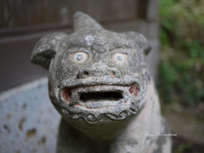 多藤神社_6-1