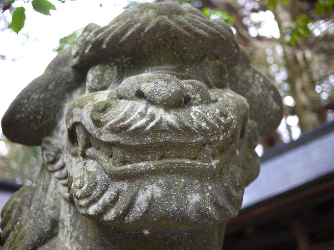 矢彦神社_17