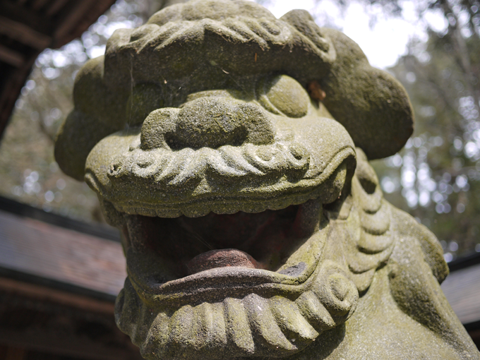 矢彦神社_16