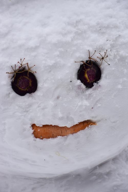 snowman_2018_2.jpg
