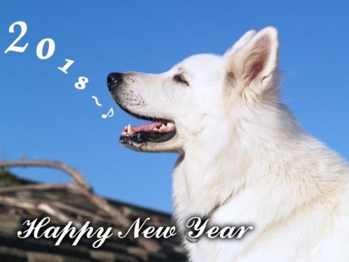 happy ny 2018