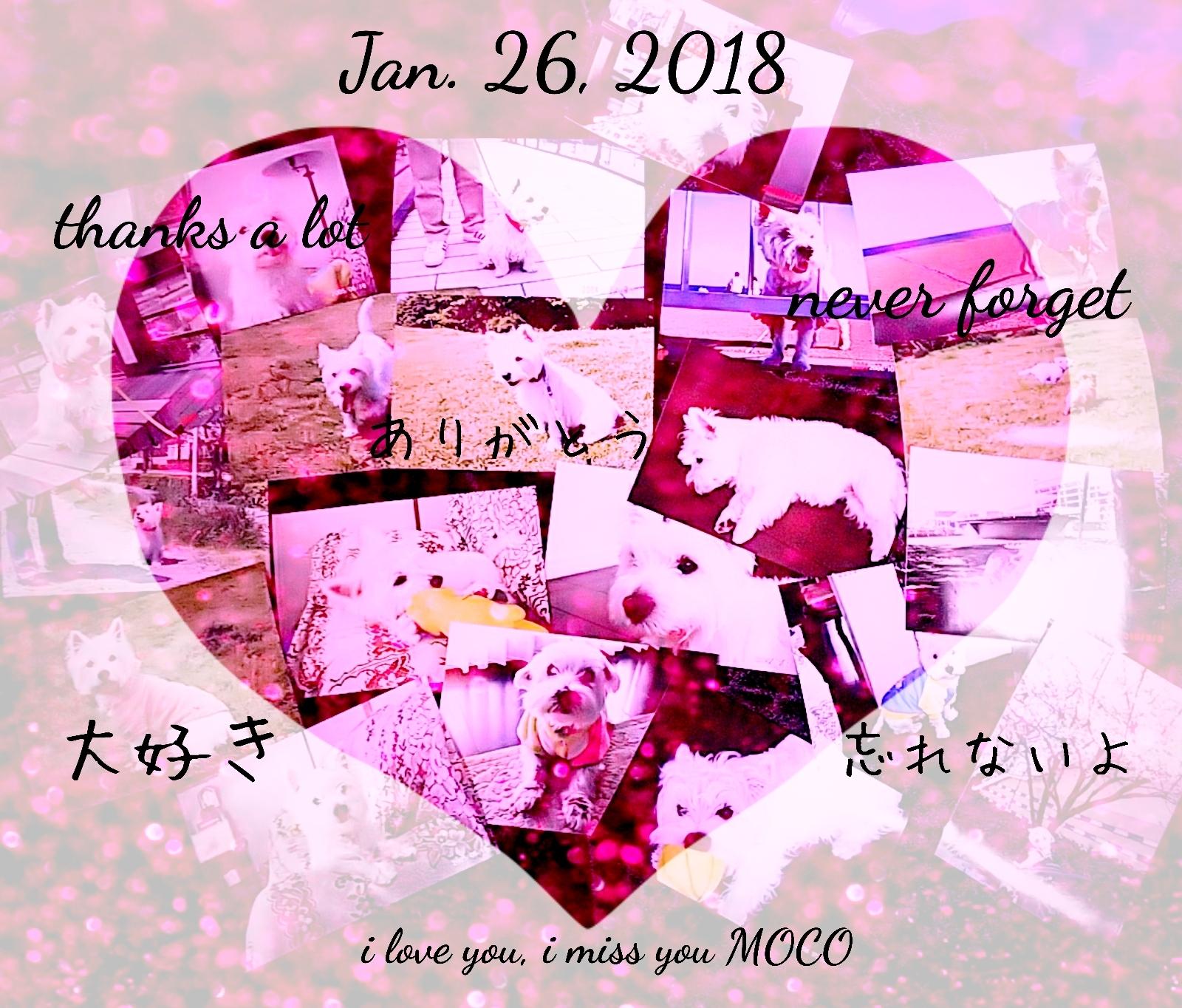 18-02-01-10-51-52-602_deco.jpg