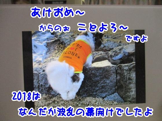 0101-02_20180101183926df1.jpg