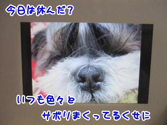 0108-05_201801081856430ee.jpg