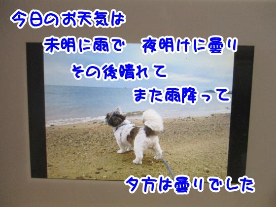 0110-10_201801101703000e1.jpg