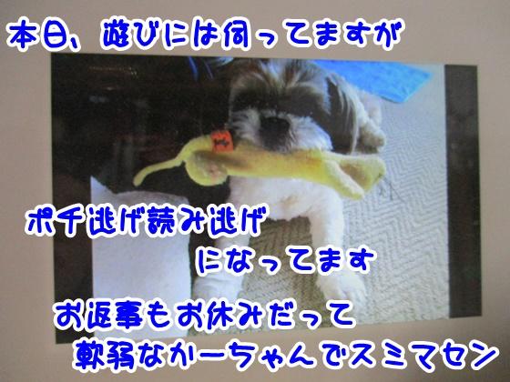 0119-04_20180119125635f57.jpg