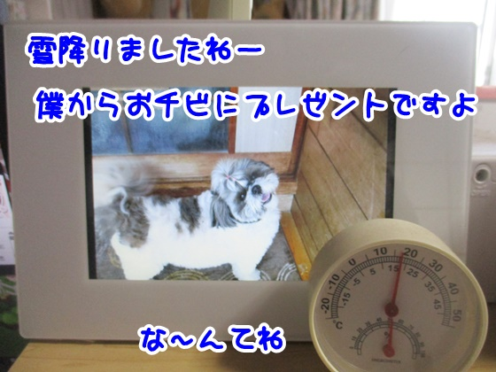 0204-08_201802041452537fc.jpg