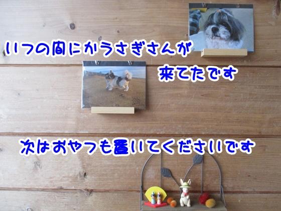 0221-08_20180221170727366.jpg