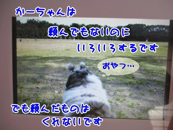 1228-08_20171228154152ce0.jpg