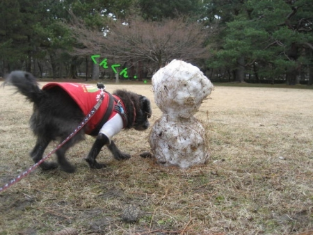 180115御所さんぽ③雪だるまとふうた