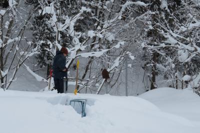 雪下ろし作業