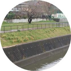 ②川沿いからの木球場