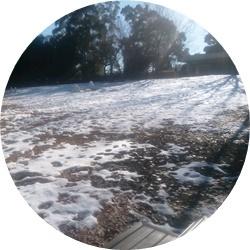 ⑪残雪の木球場