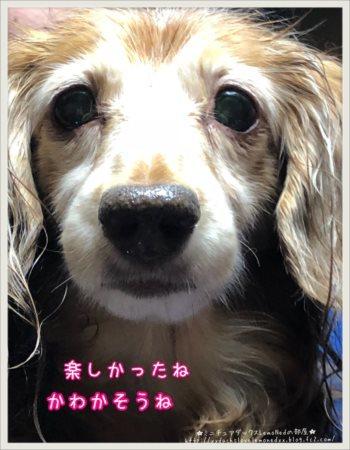 2018/01/22 大雪4