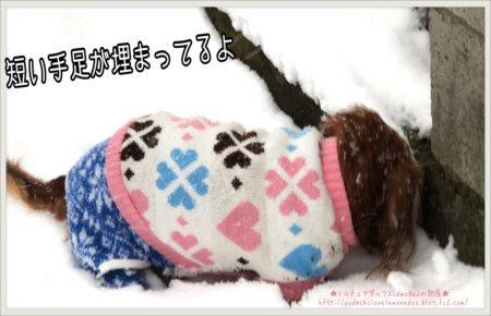 2018/01/22 大雪2-1