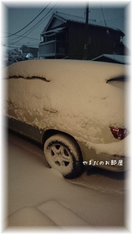2018.1.22の雪②