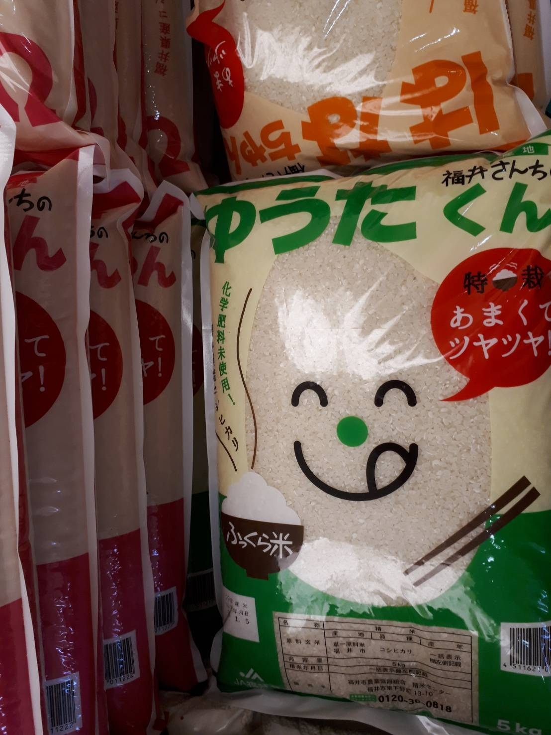 福井米コシヒカリ「ゆうたくん」「ひかるちゃん」「はなちゃん」