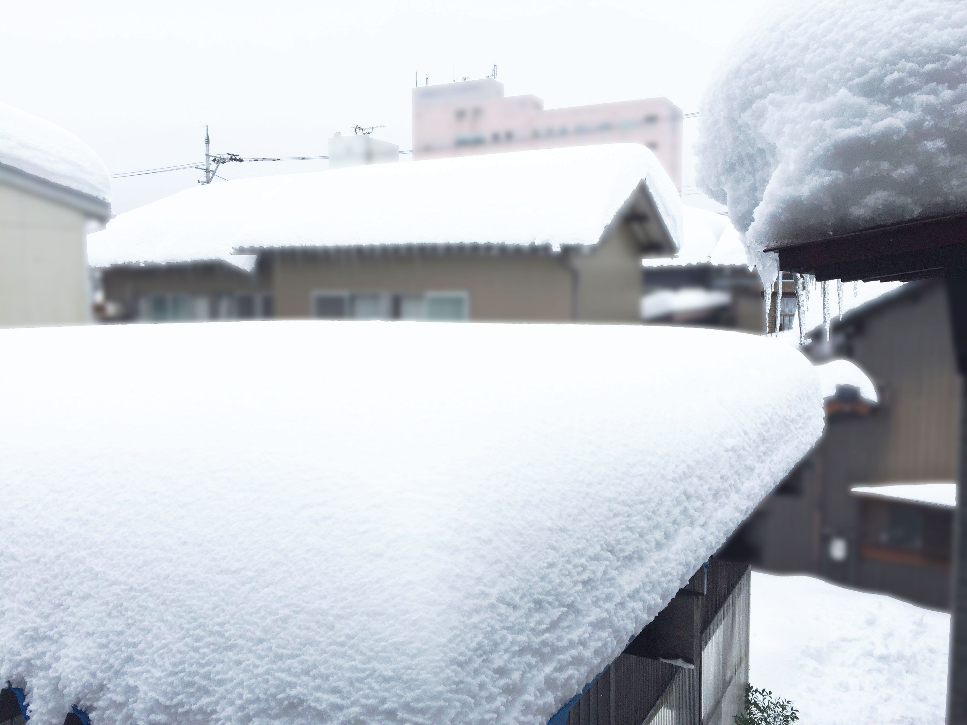 20180207_福井豪雪・大雪2日目01