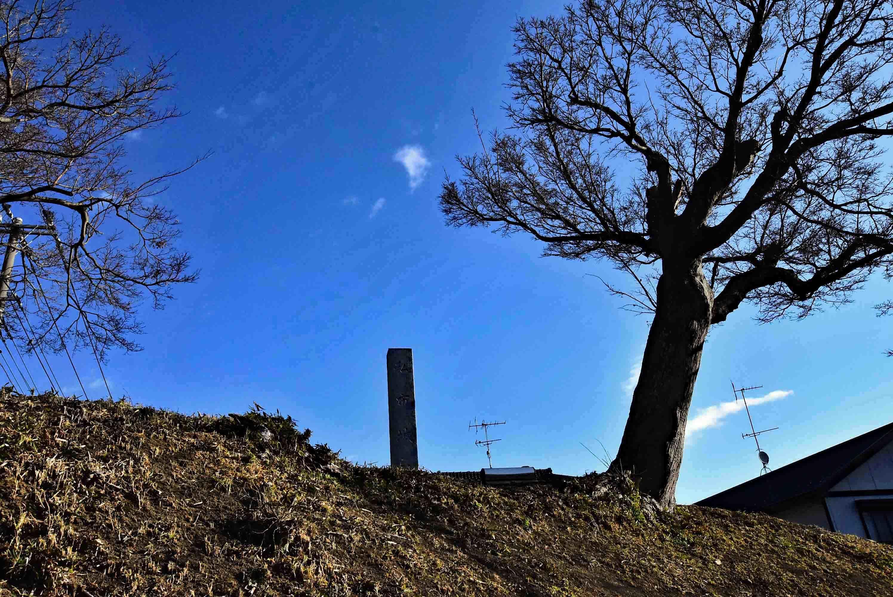 DSC_8252改 騎西城 土塁上の城址碑