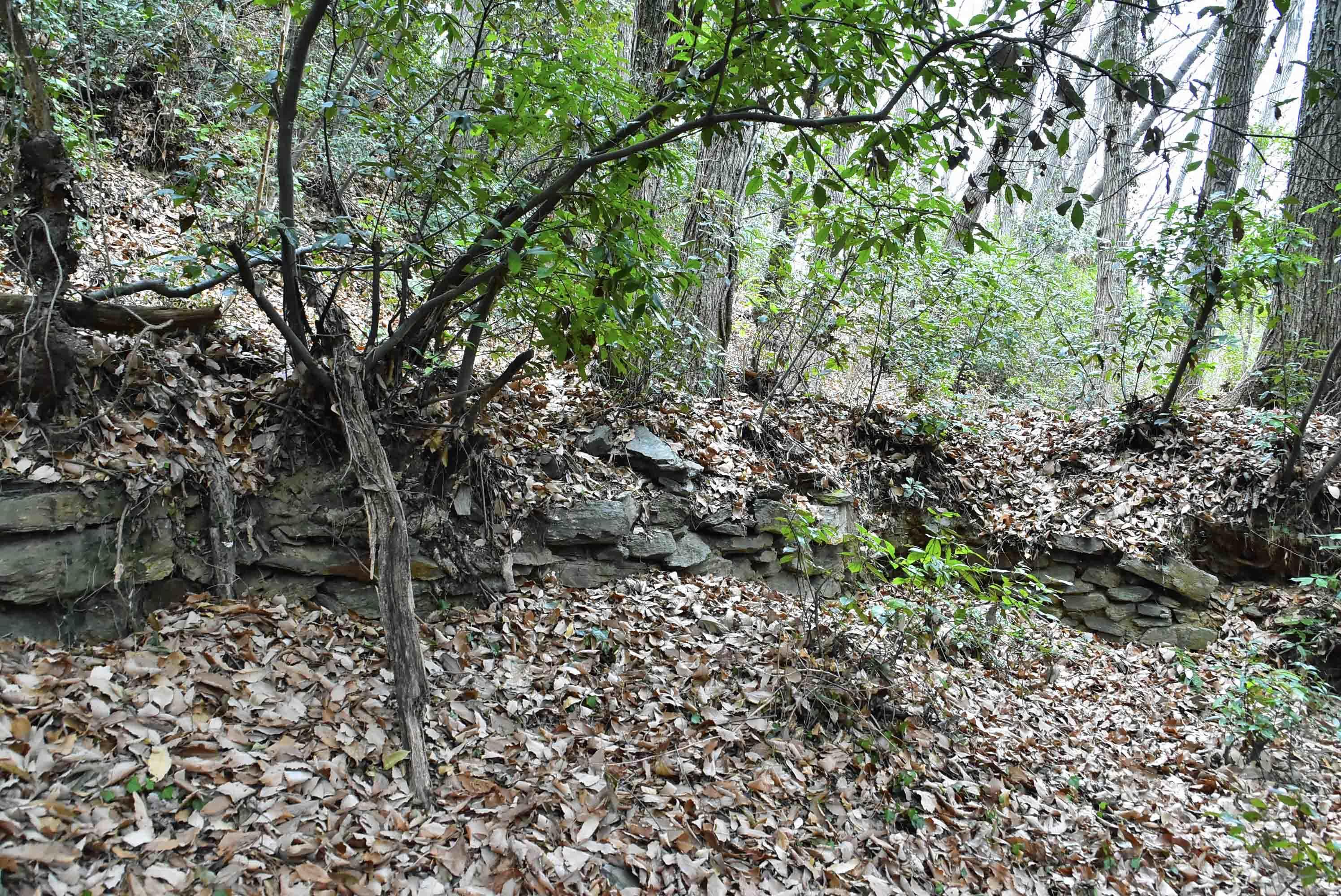 _DSC8911腰郭3 下部に残る石積