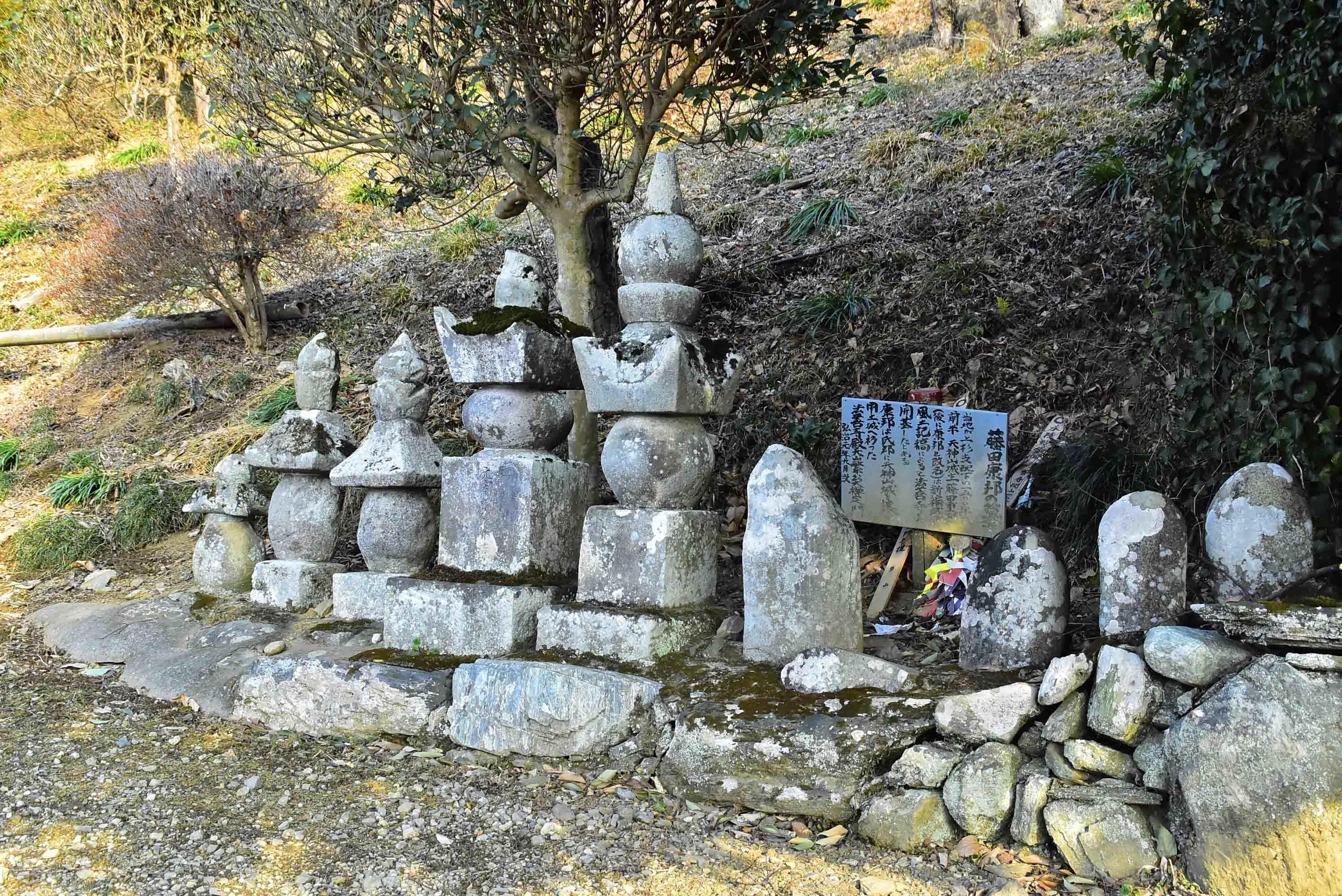 _DSC9042藤田康邦の墓 法善寺