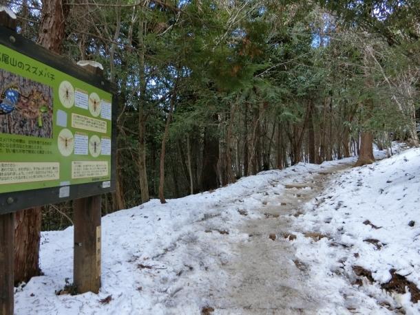 稲荷山登り (2)
