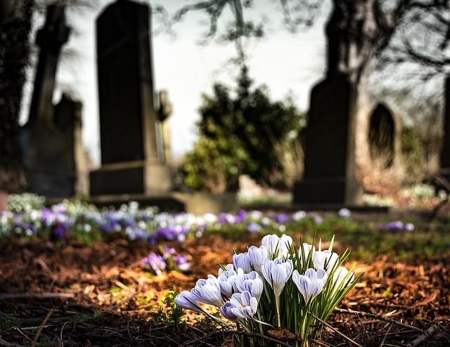 graveyard-1417871_640.jpg