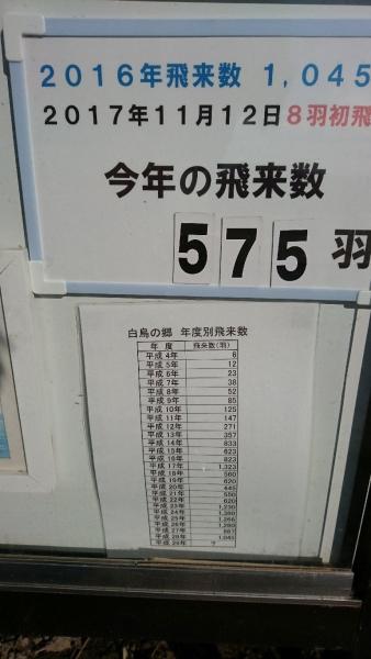 DSC_6127.jpg