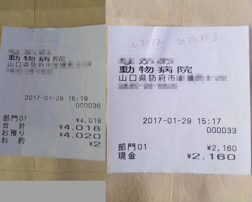 2017-01-28~29〇