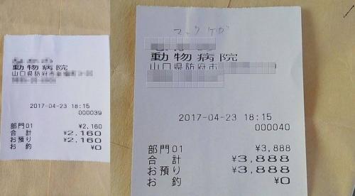 2017-04-23〇