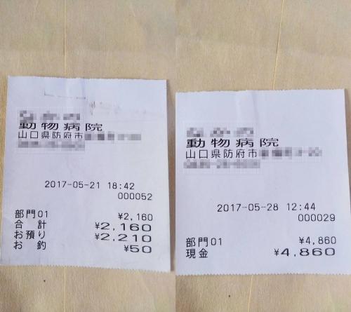 2017-05-21~28〇
