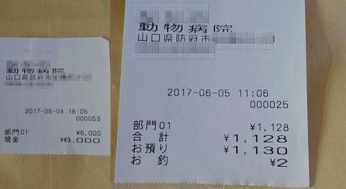 2017-06-04~05〇