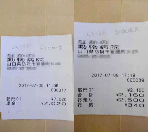 2017-07-05~09〇