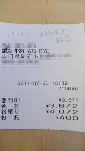 2017-07-30-01○