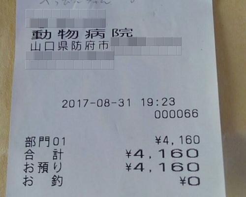 2017-08-31-01○