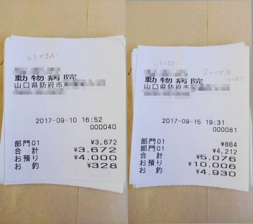 2017-09-10~15○