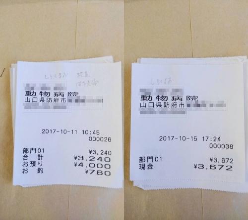 2017-10-11~15○