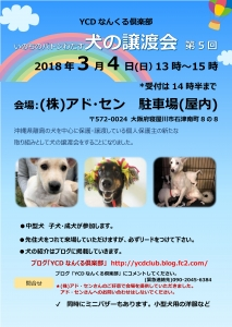 20180304YCDjyoutokaichirashisaisyu.jpg